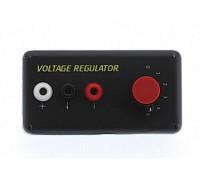 DS Racing Voltage Regulator Economic