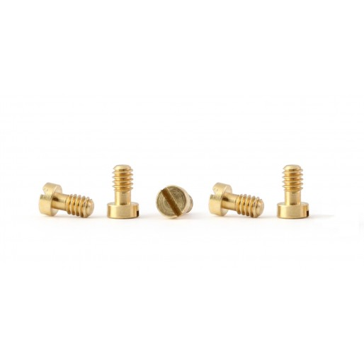 Policar PCH05 Metric screws M2.2x3.8mm, brass, (5x)