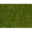 NOCH 00400 Meadow Mat Spring, 6 mm