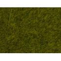 NOCH 07090 Wild Grass Meadow, 6 mm
