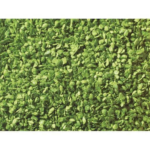 Encore 07154 Feuillage vert moyen 100 g