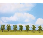 NOCH 25088 Deciduous Trees, 7 pieces, approx. 8 cm high