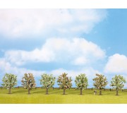 NOCH 25092 Fruit Trees, in blossom, 7 pieces, approx. 8 cm high