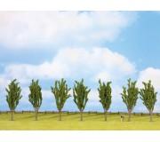 NOCH 25098 Poplars, 7 pieces, approx. 12 cm high