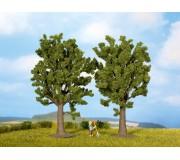 NOCH 25170 Beech Trees, 2 pieces, 13 cm high