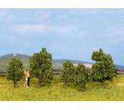 NOCH 25410 Arbustes, vert, 5 pcs., 3 - 4 cm