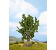 NOCH 25860 Oak, 15 cm high