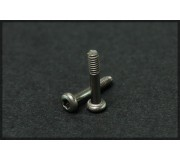 Black Arrow BASC02A Motormount M2 T6 Titanium Screws