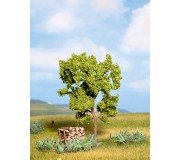 NOCH 21600 Pear Tree, green