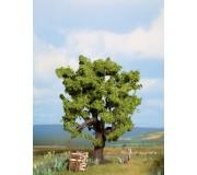 NOCH 21760 Oak