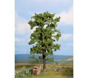 NOCH 21780 Lime Tree
