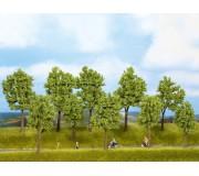 NOCH 24100 Trees Spring, 5 pieces, 10 - 14 cm high