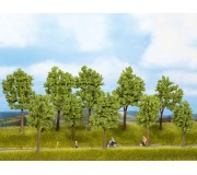 NOCH 24200 Trees Spring, 10 pieces, 10 - 14 cm high