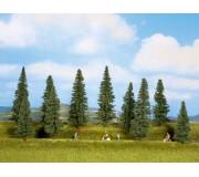 NOCH 24250 Fir Trees, 10 pieces, 4 - 10 cm high