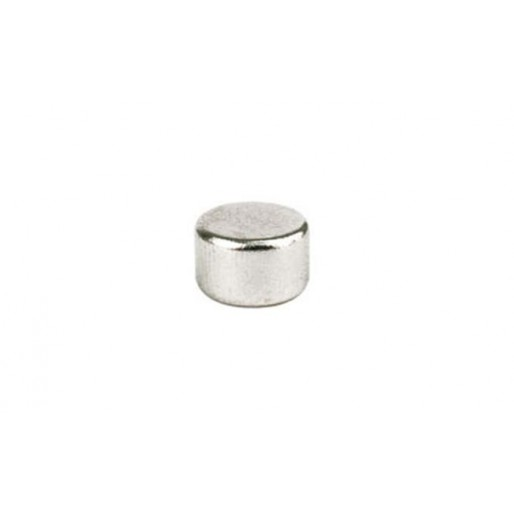 Ninco 80303 Cylindrical Magnets 8x5mm x2