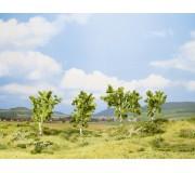 NOCH 25001 Arbre fruitier, vert