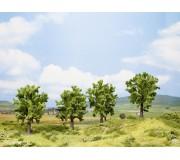 NOCH 25001 Fruit Tree, green