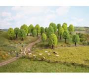 NOCH 26001 Deciduous Trees