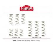 NSR 1296 Complete spring set for Formula 86/89