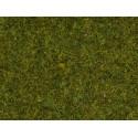 """NOCH 08361 Scatter Grass """" Meadow """""""