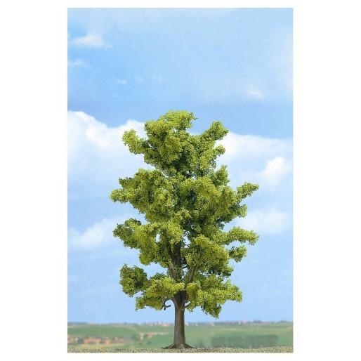 Ash Tree 180mm