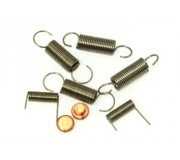 DS Racing Springs Set + Carbon Brush + Handle Screws