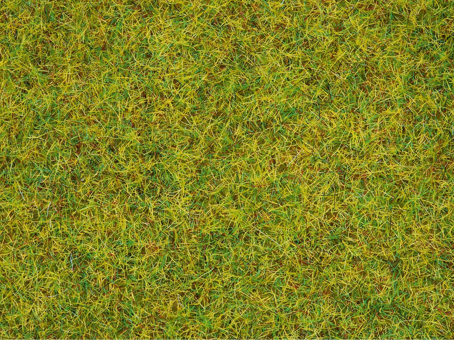 2,5 mm NOCH 08151 Herbes pré de printemps
